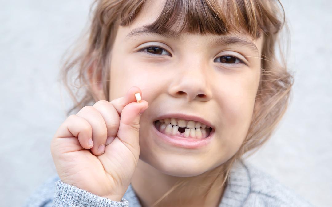 Células madre en los dientes de leche